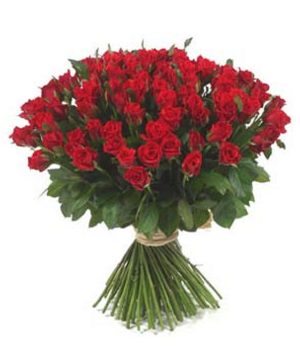 100 Red Valentine Roses