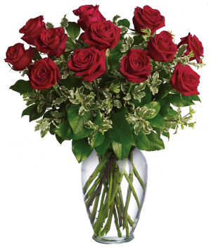12 roses rouges, extra longues (80cm)