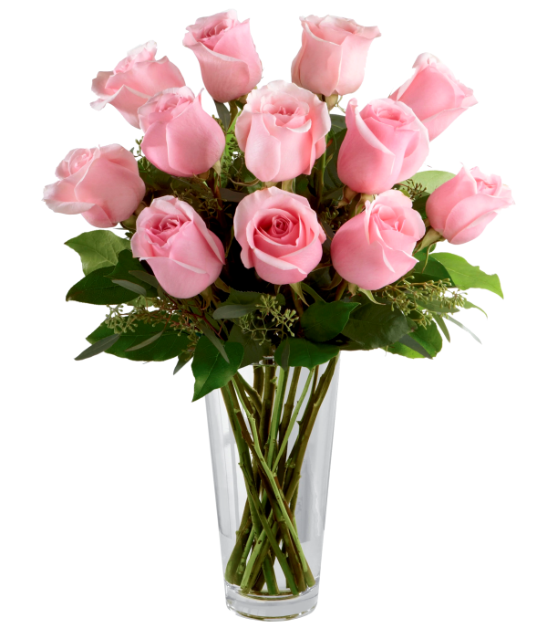 One Dozen Long Stemmed Pink Roses