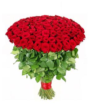 150 Red Valentine Roses