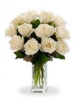12 Long Stemmed White Roses