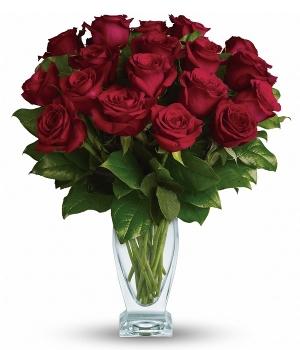 18 magníficas Rosas Rojas de Tallo Largo