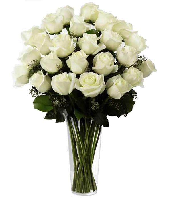 24 Long Stemmed White Roses