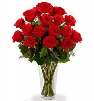 18 Red Long Stem Roses