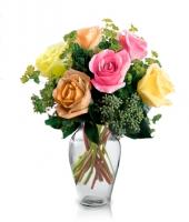6 Mixed Long Stem Roses