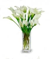 24 Stunning Calla Lilies