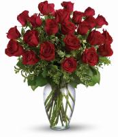 24 Christmas Roses