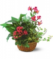 "10"" Planter Basket"