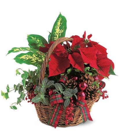 Christmas Planter Basket