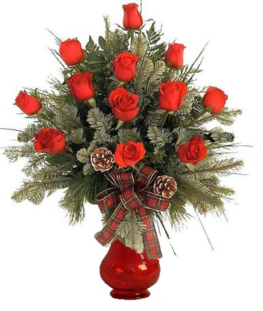 12 Christmas Roses