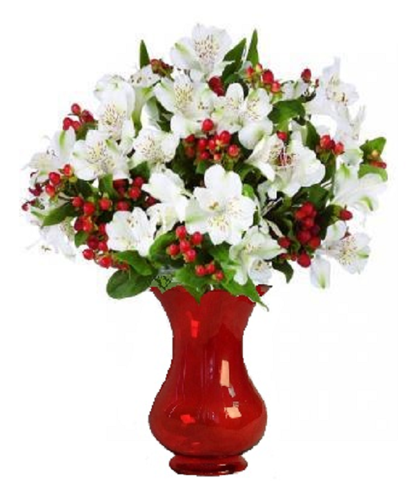 50 Blooms of Holiday Alstroemeria