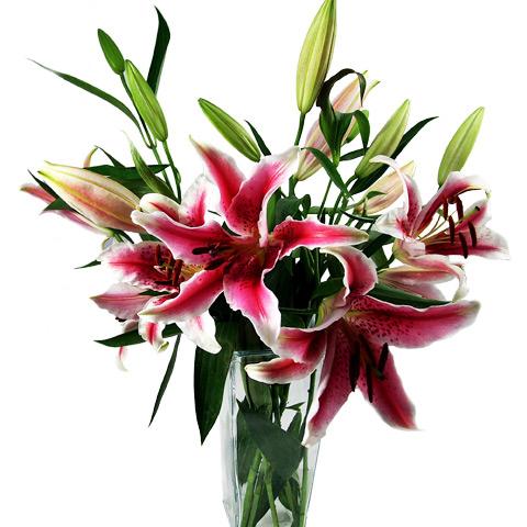 Touch of Class Bouquet