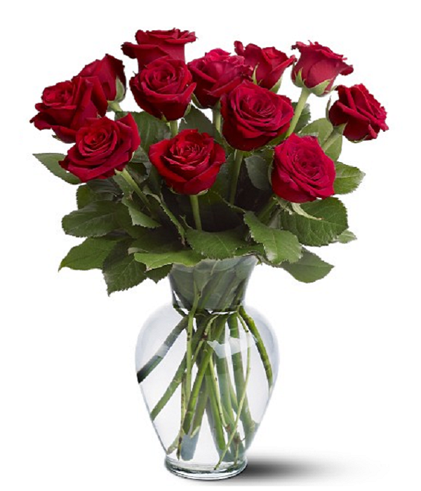 One Dozen Long Stemmed Red Roses