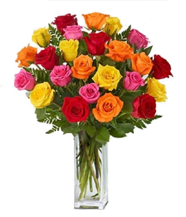 Two Dozen Long Stemmed Assorted Roses