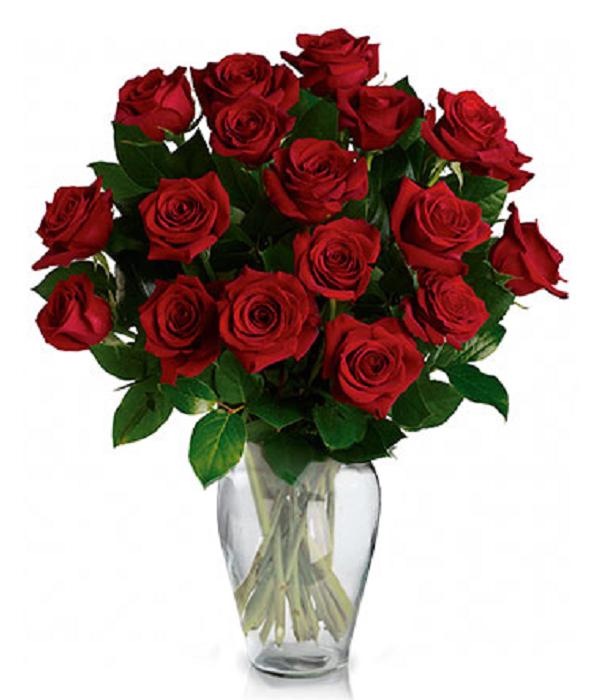 Dos Docenas de Rosas Rojas de Tallo Largo!