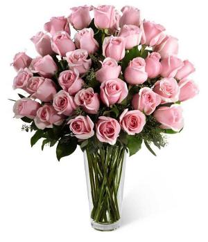 Dos Docenas de Rosas Rosadas de Tallo Largo