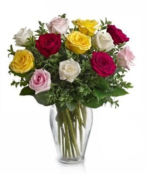 Una Docena Rosas Mixtas de Tallo Largo