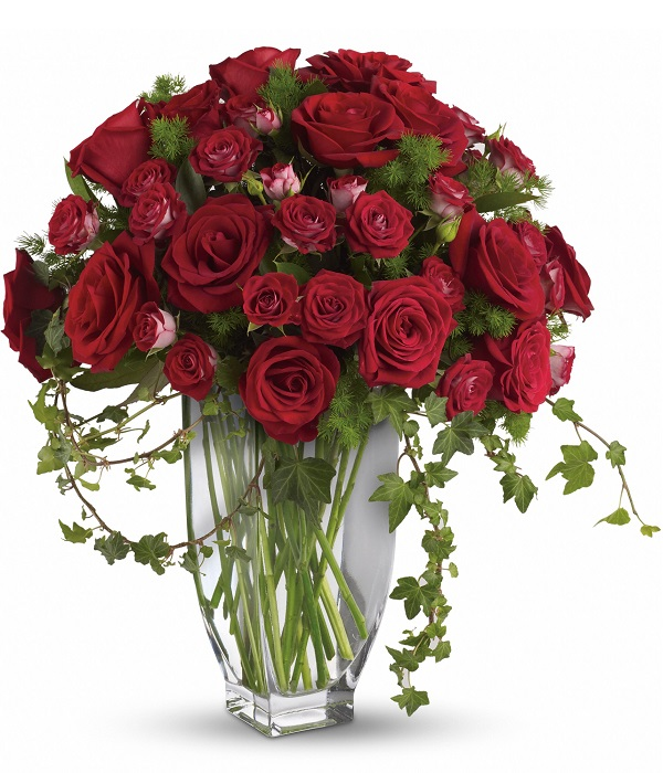 Rosas de Romanticismo