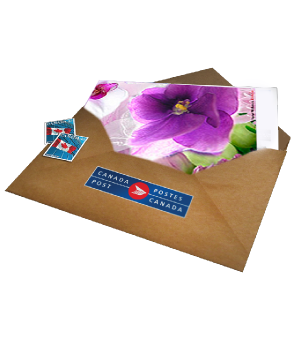 Full Size Card with Postage