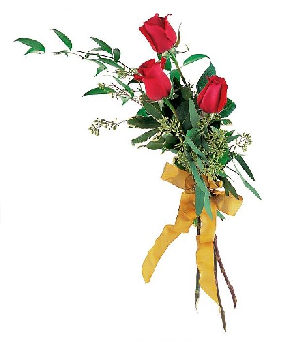 Toque De Rosas Rojas