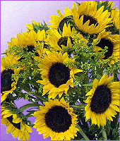 Extra Large Sunflower Bouquet