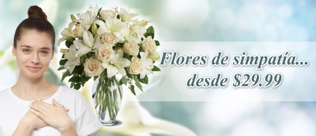 /sp/Special-Occasions/Sympathy-Funeral-Flowers.html
