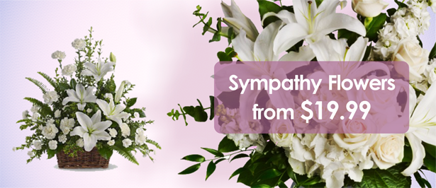 /Funeral-Flowers/View-all-products.html